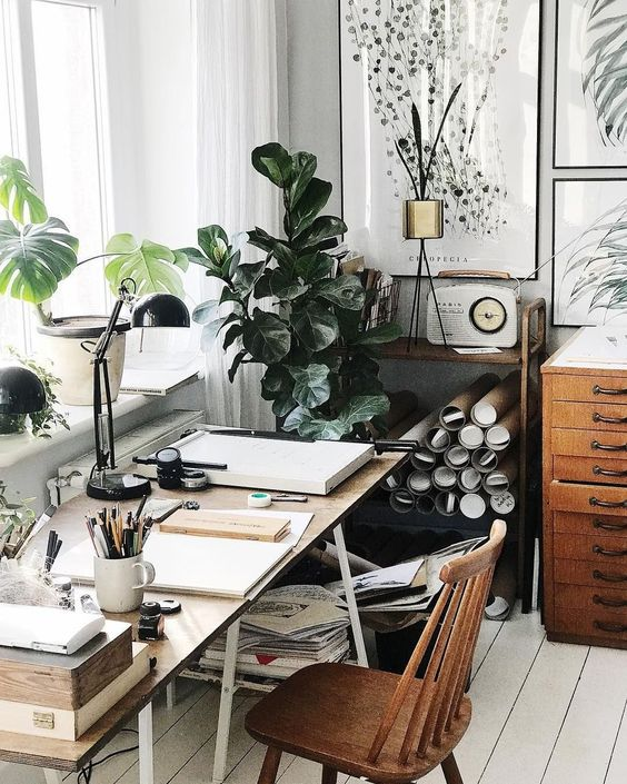 Artist inspiring office space with plants