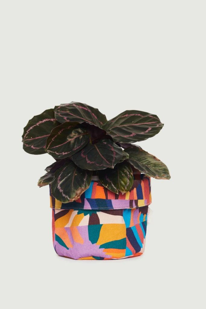 Plant cover multicolour pouch colourful The Style Index