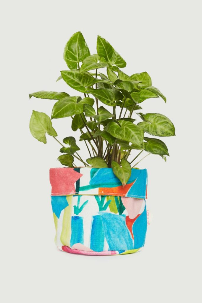 Plant cover paint pouch colourful The Style Index