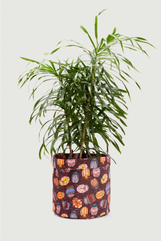 Plant cover purple pouch colourful The Style Index