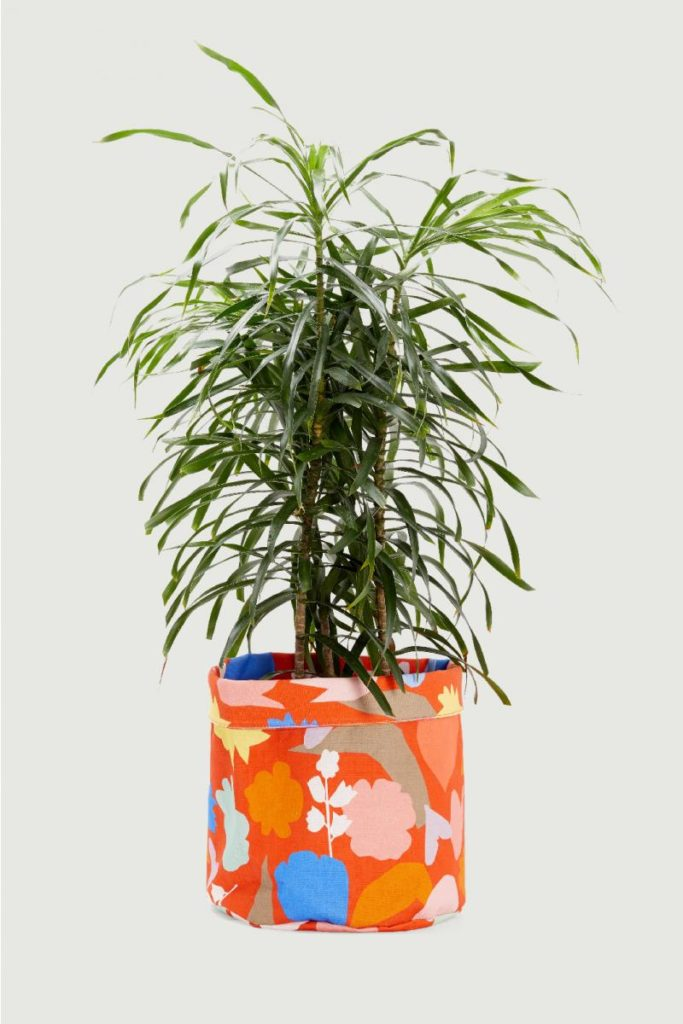 Plant cover pouch colourful orange The Style Index