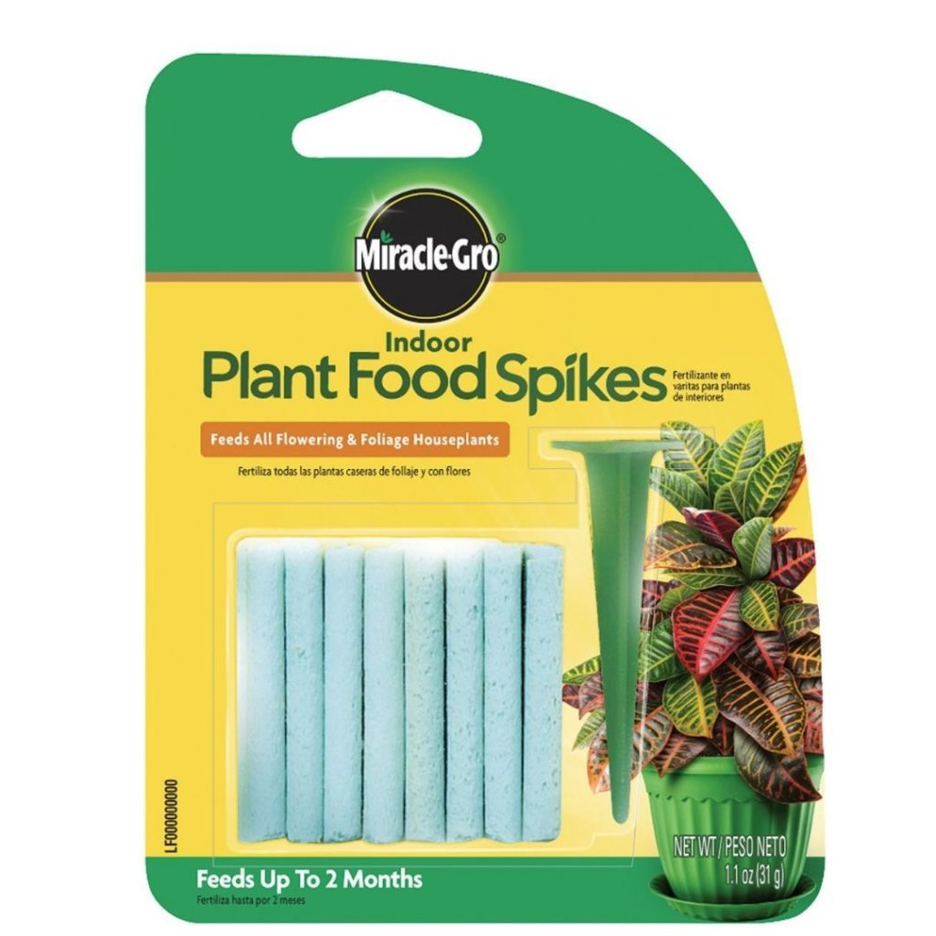 Plant food supplies plant care
