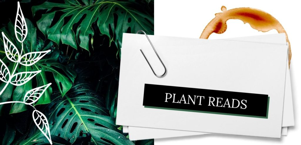 Plant reads how to care for plants