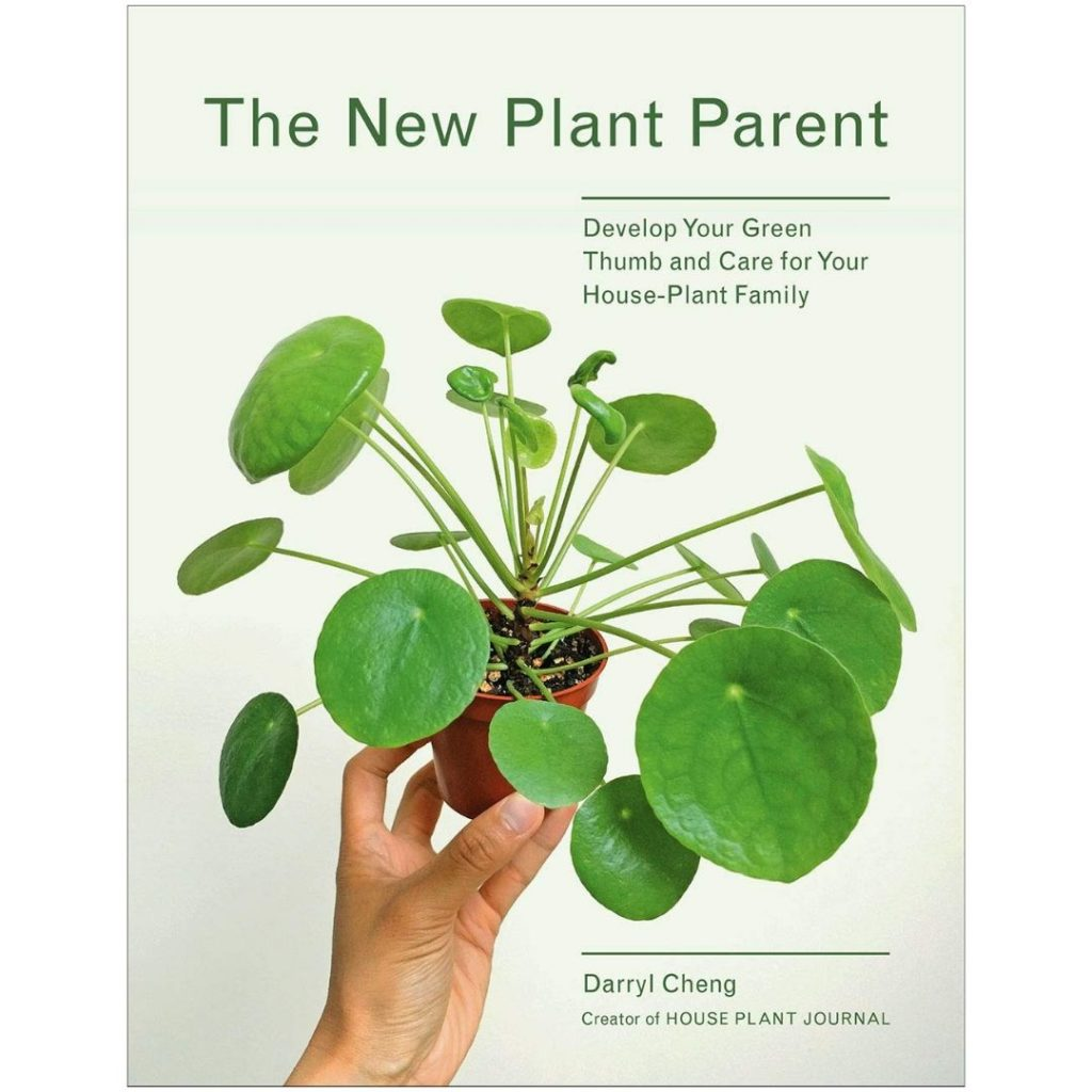 Plant parent how to care