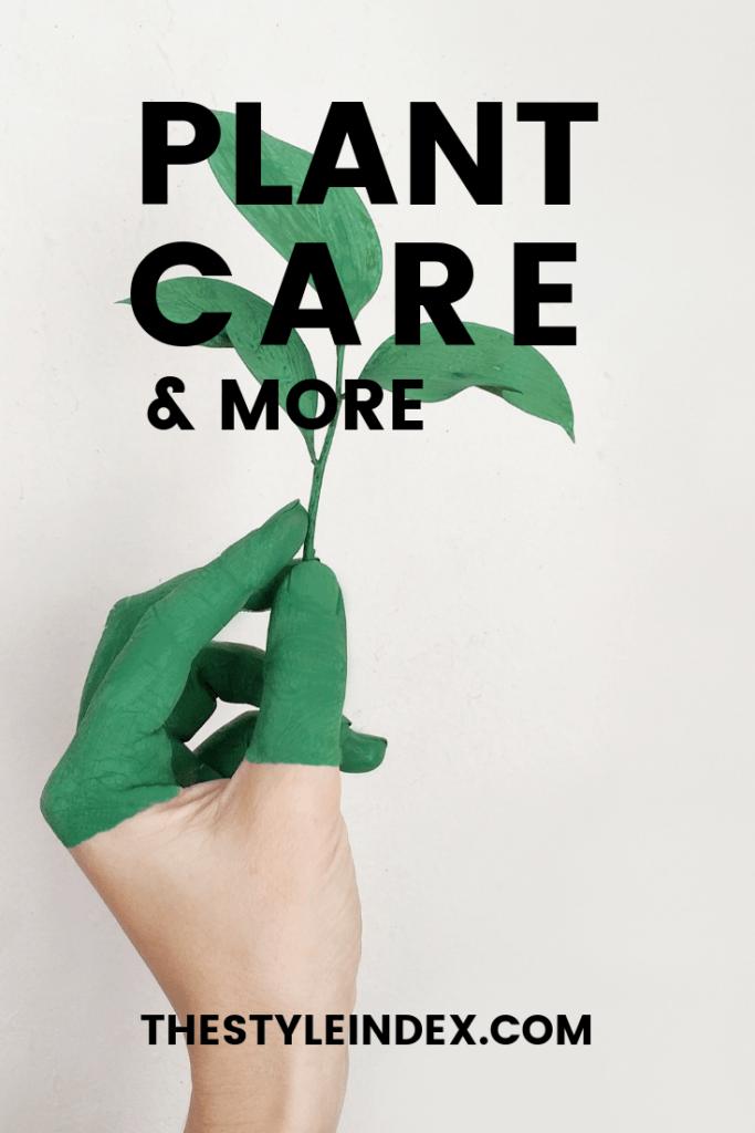 Plant care greenery