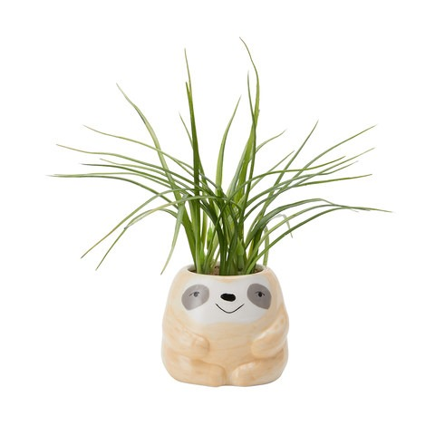 fake plant with sloth