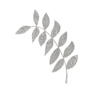Silver Leaf free clipart