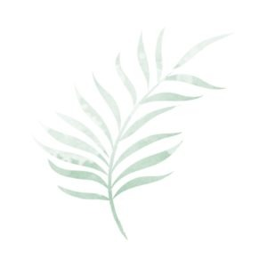Watercolour green leaf free clipart