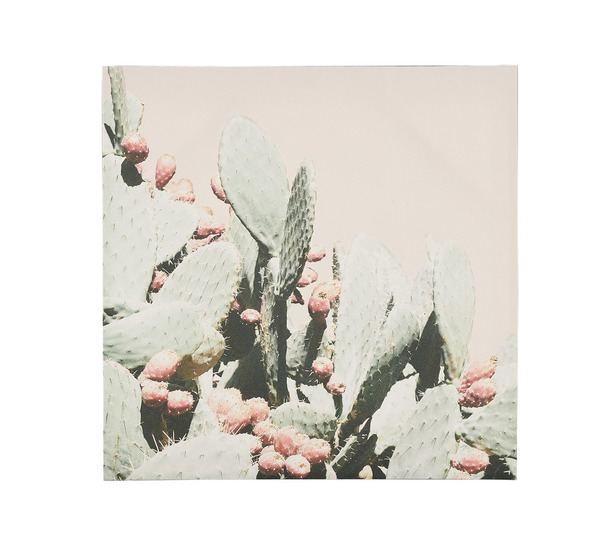 Cactus Bloom Wall Art