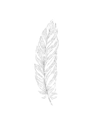 Silver Glitter Feather