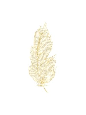 Gold Glitter Fine Feather