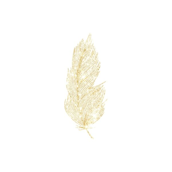 Gold Glitter Fine Feather