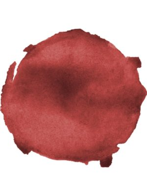 Burgundy Watercolor Paint Spot