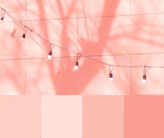 Color Palette #0100