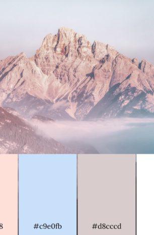 Color Palette #0102