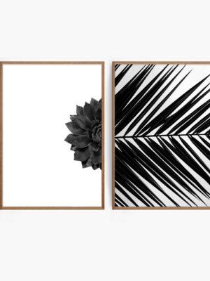 Monochrome Fauna Set Free Prints