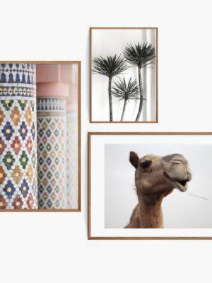 Marrakech Holiday Set Free Prints