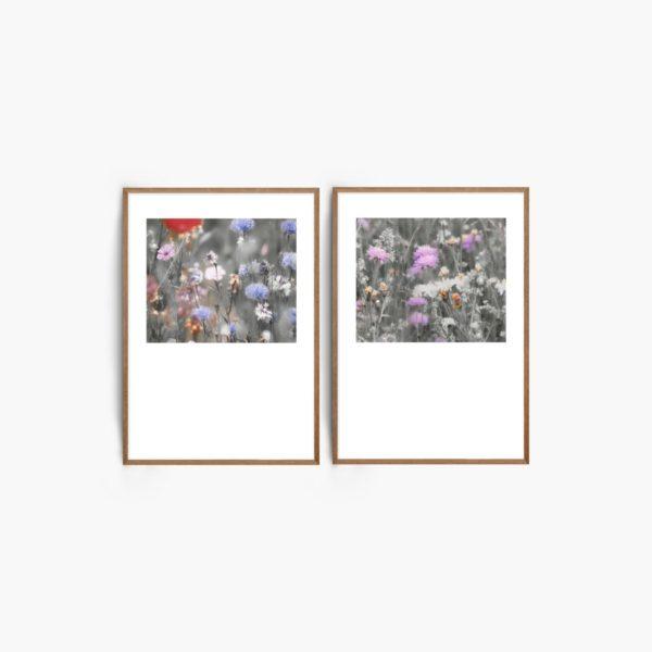 Wild Floral Free Printables
