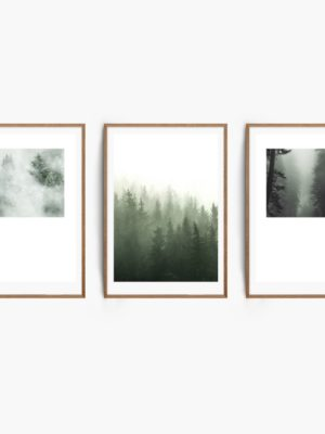 aMisty Forest Set Free Prints