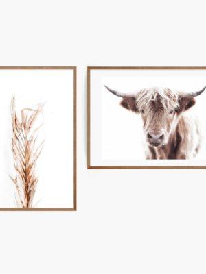 Highland Cow Set Free Prints