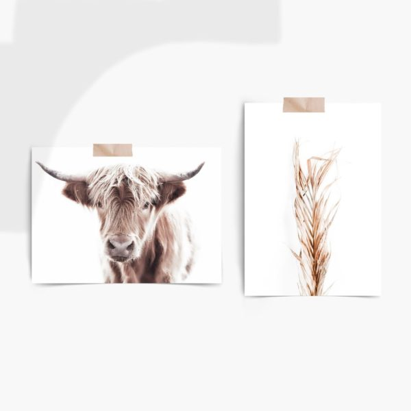 Highland Cow Set Free Prints