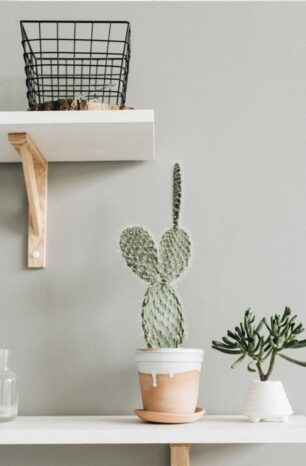 Ditch the wine, we found the perfect housewarming gift!